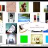 Урок 224 цвета