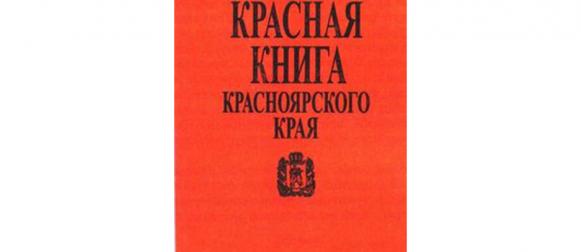 Школьникам рассказали о представителях Красной книги Красноярья