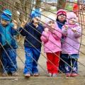 В Минусинске сокращается очередь в детские садыВ Минусинске сокращается очередь в детские сады